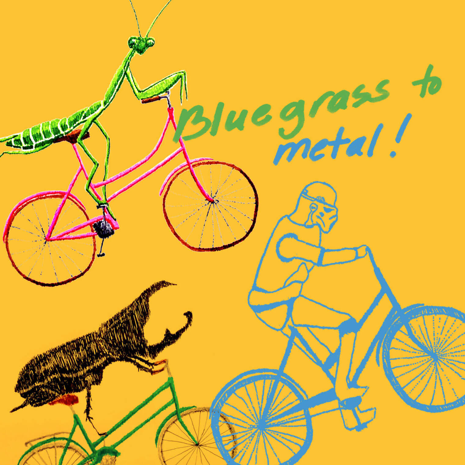 BLUEGRASS TO METAL